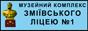 Баннер сайта Музейный комплекс Змиевского лицея №1